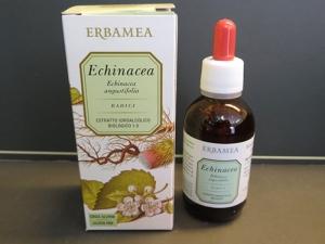 estratto idroalcolico echinacea (tintura madre)