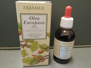 olivo gemmoderivato erbamea